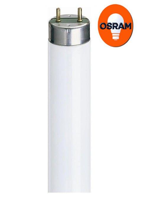 Osram T8 Fluorescent Tubes