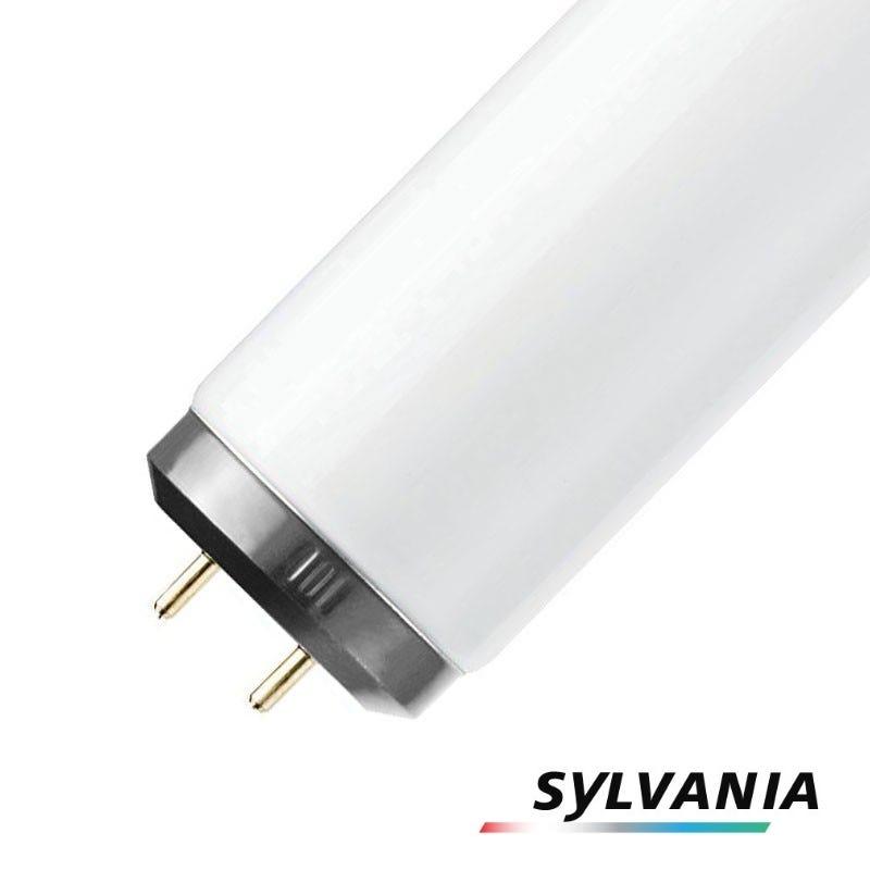 Sylvania T12 Tubes