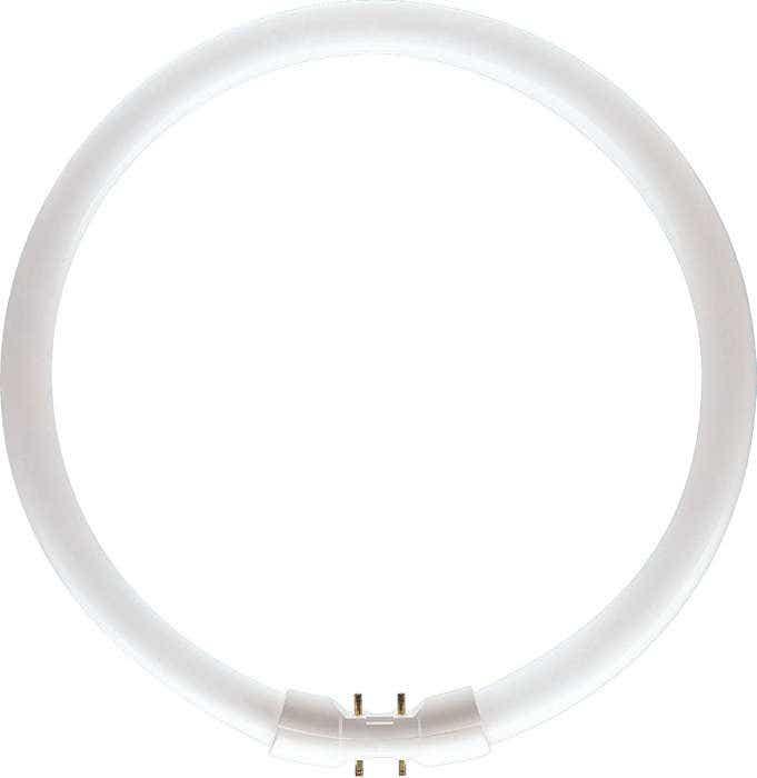Branded T5 Circular