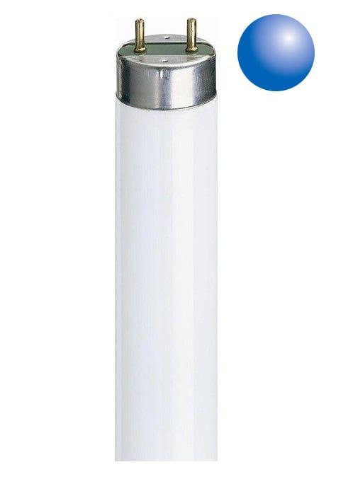 Daylight T8 Tubes