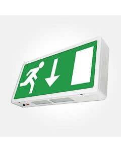 Bright Source LED Emergency Exit Box - Down Arrow